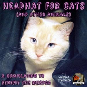 12 headhat